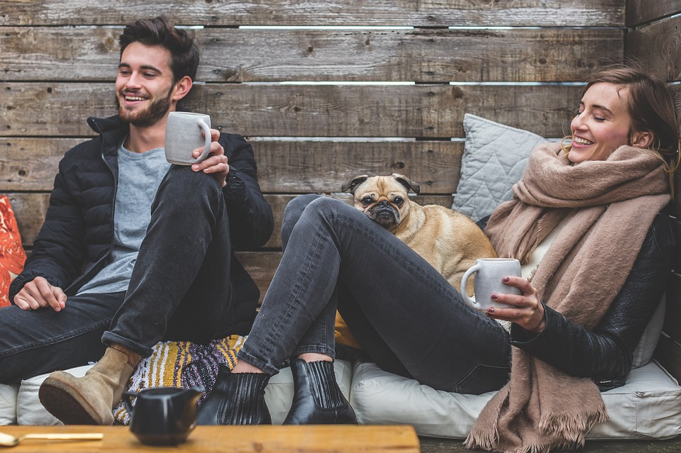 A diabetic, a PWD and a pug (diabetes-free)